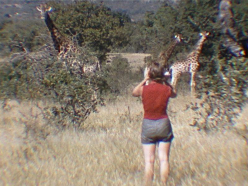 documentary-woman-who-loves-giraffes