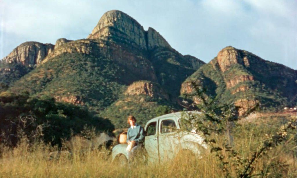 anne-innis-dagg-original-photos-south-africa